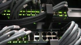 Het knipperen netwerk ethernet schakelaar met verbonden kabels in serverruimte De video heeft een zacht effect stock video