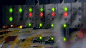 Het knipperen schakelen de rode en groene indicatoren op netwerk terug paneel 4K stock footage