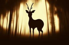 Het knipsel van het hertensilhouet in geheimzinnig surreal bos royalty-vrije stock afbeeldingen
