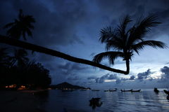 HET KNOCK-OUT TAO VAN AZIË THAILAND Royalty-vrije Stock Foto's