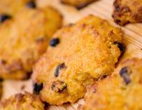 Het koekje van de wortel met rozijnen. Royalty-vrije Stock Foto's