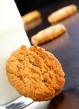 Het koekje van het havermeel Royalty-vrije Stock Afbeeldingen