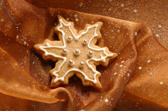 Het Koekje van Kerstmis royalty-vrije stock fotografie