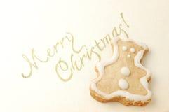 Het koekje van Kerstmis stock foto