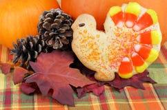 Het koekje van Turkije met pompoenen stock afbeelding