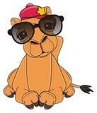 Het koele kameel liggen royalty-vrije illustratie