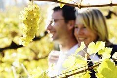 Het koesteren van paar in wijngaard. Stock Fotografie