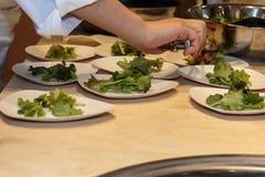Het koken binnenrestaurant& x27; s Keuken: Chef-kok Preparing Dishes met stock fotografie