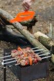 Het koken braadstukkebab op steenkolen Stock Foto's