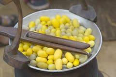 Het koken coconzijderups in de pot royalty-vrije stock fotografie