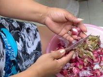 Het koken en huisconcept - sluit omhoog van vrouwelijk handen en mes die schil van knoflook op bassin opstijgen Royalty-vrije Stock Afbeelding