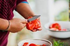 Het het koken procédé voor verse groentesalade, gezonde voeding, vrouwen` s handen sneed komkommers en tomaten stock foto