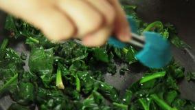 Het koken quicherecept en het mengen van ingrediënten stock video