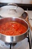 Het koken tomatensalsa Stock Fotografie