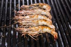 Het koken van garnalen kebabs op de grill Stock Foto