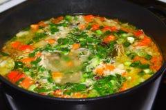 Het koken van groentesoep Stock Foto