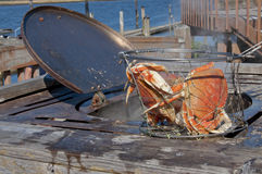 Het koken van krab in openluchtpot Stock Foto