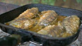 Het koken van vissen in olie in een pan en een grill Bakvis in openlucht professionele catering Heerlijk knapperig voedsel stock footage