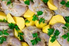 Het koken van vleeskwartels in de oven Gehele kwartelsmarinovani in kruiden met uien en mosterd Versier met verse aardappels en p stock afbeelding