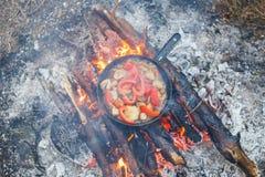 Het koken van witte paddestoelen met tomaten in een pan op een brand in het de lentebos stock afbeeldingen