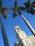 Het koloniale bulding en palmen, Cuba Stock Afbeeldingen