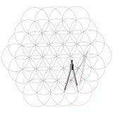 Het kompas van de tekening trekt cirkels. Stock Fotografie