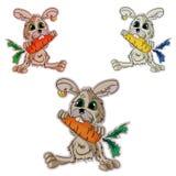 Het konijn eet wortelen Stock Fotografie