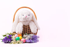 Het konijn kleurrijke eieren en bloemen van Pasen Stock Foto