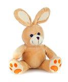 Het konijn van Peluche Stock Foto