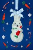 Het konijn witn wortel van Fanny Stock Afbeeldingen