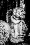 Het konijntje van de engelenholding stock foto
