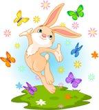 Het konijntje van de lente Stock Afbeelding