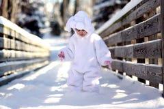 Het konijntje van de winter Stock Fotografie