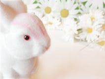 Het konijntje van Pasen onder madeliefjes Royalty-vrije Stock Foto's