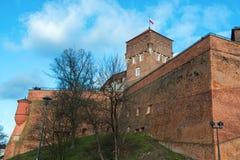 Het Koninklijke Kasteel van Wawel in Krakau Stock Fotografie