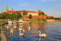 Het Koninklijke Wawel Kasteel van Krakau en Vistula-rivier Stock Afbeeldingen