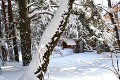 Het Koninkrijk van sneeuw Stock Foto's