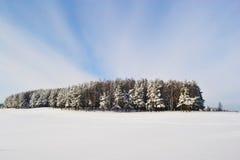 Het Koninkrijk van sneeuw Royalty-vrije Stock Fotografie