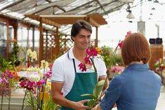Het kopen van de vrouw orchideeën royalty-vrije stock afbeelding