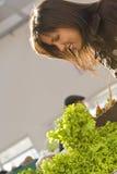 Het kopen van de vrouw salade Stock Foto's