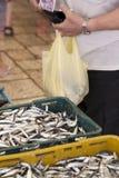 Het kopen verse vissen op markt, vroege ochtend royalty-vrije stock foto
