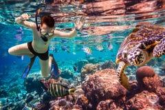 Het koraalrif van de Snorkelermaldiven Indische Oceaan stock foto