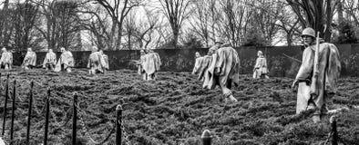 Het Koreaanse Gedenkteken van Oorlogsveteranen in Washington, gelijkstroom, de V.S. Donkere zwarte versie van het schot Stock Fotografie