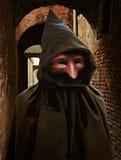 Het kostuum van Carnaval, Venetië Royalty-vrije Stock Afbeeldingen