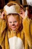 Het kostuum van de leeuw Stock Foto's