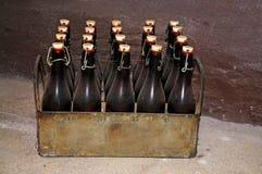Het krat van het bier stock fotografie