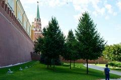 Het Kremlin in Moskou stock foto
