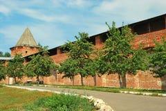 Het Kremlin in Zaraysk royalty-vrije stock afbeeldingen