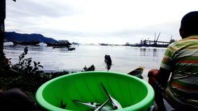 Het krijgen van Vissen Stock Foto