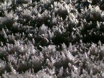 Het kristal van de sneeuw royalty-vrije stock foto